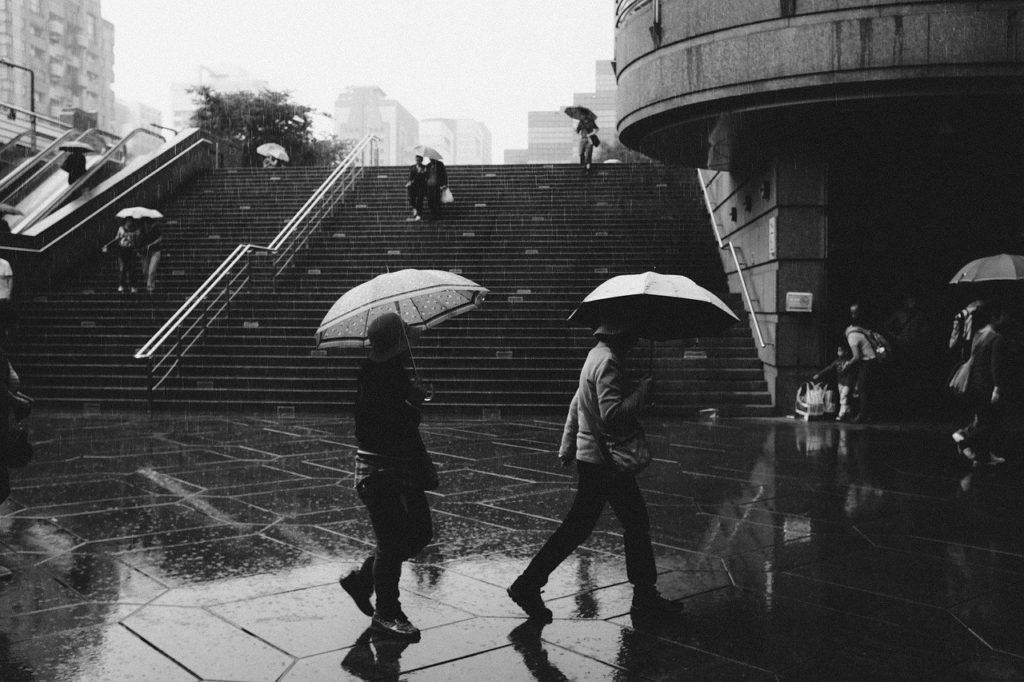 雨の濡れた地面